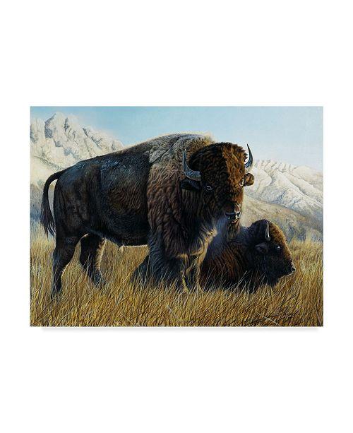 "Trademark Global Rusty Frentner 'Resting Buffalo' Canvas Art - 35"" x 47"""