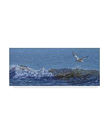 "Rusty Frentner 'Sailing' Canvas Art - 20"" x 47"""