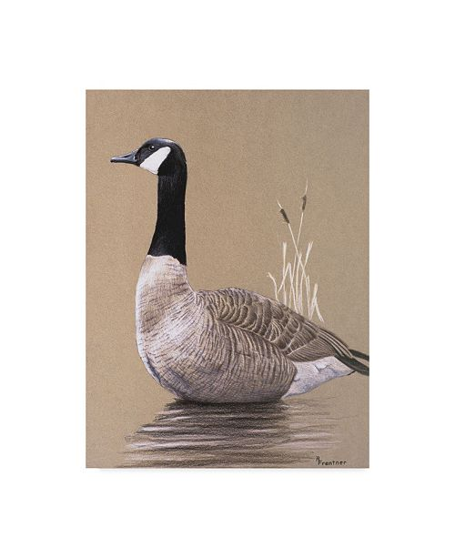 "Trademark Global Rusty Frentner 'Lone Goose' Canvas Art - 35"" x 47"""