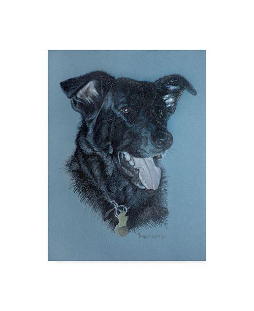 "Trademark Global Rusty Frentner 'Dog Portrait' Canvas Art - 35"" x 47"""
