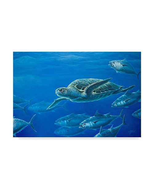 "Trademark Global Wilhelm Goebel 'Sea Turtle' Canvas Art - 30"" x 47"""