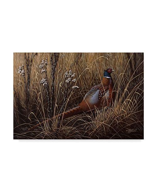 "Trademark Global Wilhelm Goebel 'Pheasant In The Grass' Canvas Art - 30"" x 47"""