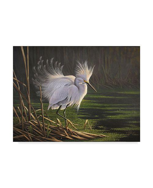 "Trademark Global Wilhelm Goebel 'White Heron Feathers' Canvas Art - 35"" x 47"""