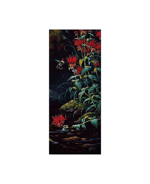 "Trademark Global Wilhelm Goebel 'Ruby Throated Hummingbird' Canvas Art - 20"" x 47"""