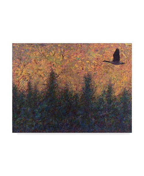 "Trademark Global James W. Johnson 'Solitary Goose' Canvas Art - 47"" x 35"""