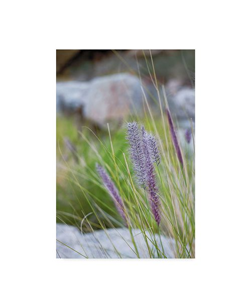 "Trademark Global Janice Sullivan 'Purple Wild Grass I' Canvas Art - 30"" x 47"""