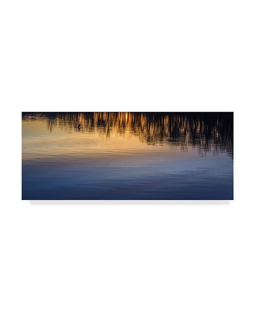 "Trademark Global Jason Matias 'Reflection On Lake' Canvas Art - 47"" x 20"""