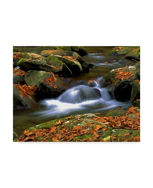 "Trademark Global J.D. Mcfarlan 'West Prong White Water' Canvas Art - 32"" x 24"""