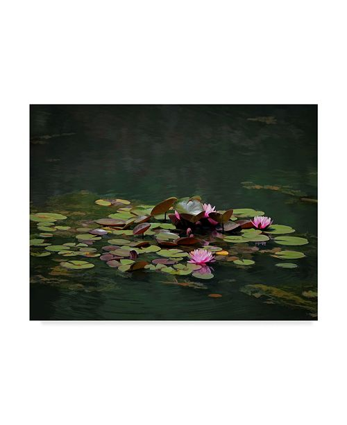 "Trademark Global J.D. Mcfarlan 'Water Lillies' Canvas Art - 47"" x 35"""