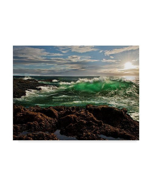 "Trademark Global Natalie Mikaels 'The Wave Rocky' Canvas Art - 47"" x 35"""