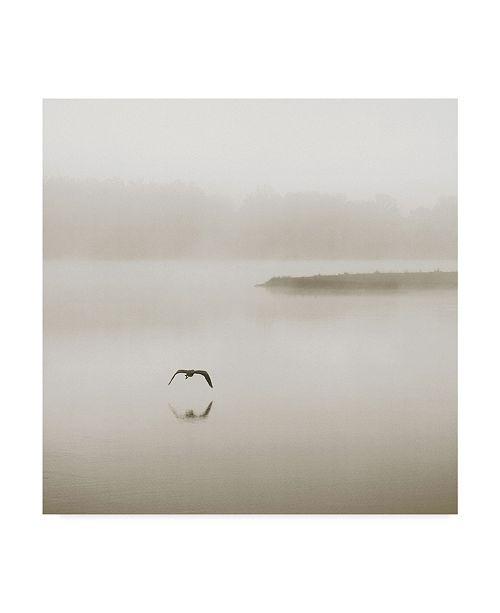 "Trademark Global Nicholas Bell Photography 'Silence Seagull' Canvas Art - 24"" x 24"""