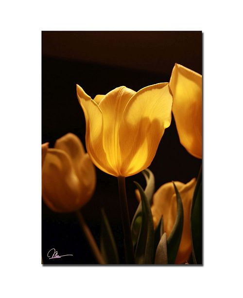 "Trademark Global Martha Guerra 'Yellow Bouquet' Canvas Art - 32"" x 22"""