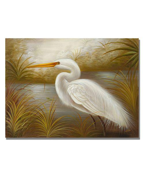 "Trademark Global Rio 'White Heron' Canvas Art - 47"" x 35"""