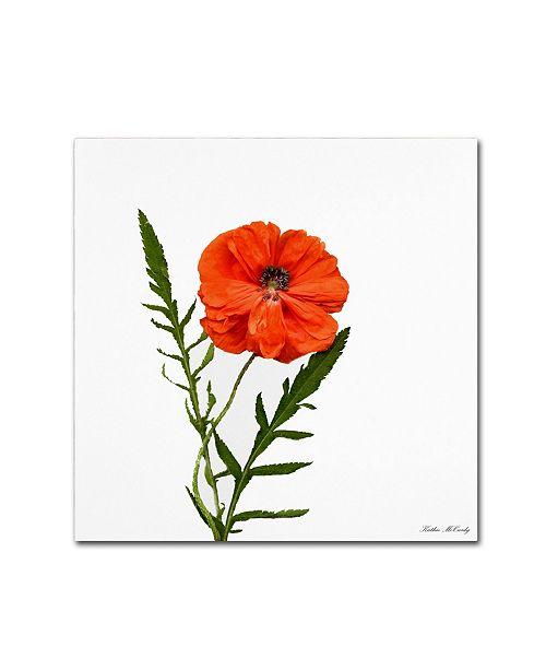 "Trademark Global Kathie McCurdy 'Poppy' Canvas Art - 24"" x 24"""