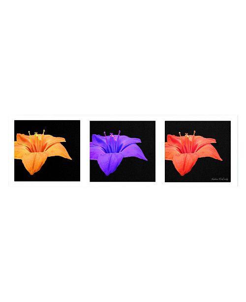 "Trademark Global Kathie McCurdy 'Amarillis Tryptic' Canvas Art - 47"" x 16"""