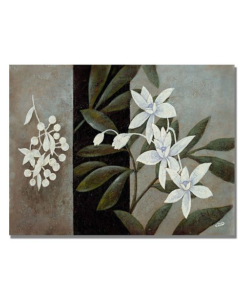 "Trademark Global Rio 'White Fresh' Canvas Art - 24"" x 18"""