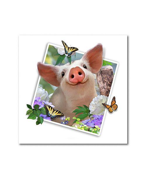 "Trademark Global Howard Robinson 'Baby Pig Photograph' Metal Art - 16"" x 16"""