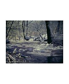 "D. Rusty Rust 'Winters Wonder' Canvas Art - 14"" x 19"""