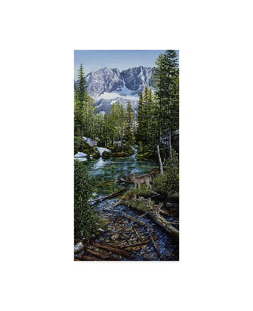 "Trademark Global Jeff Tift 'Wilderness Family' Canvas Art - 12"" x 24"""