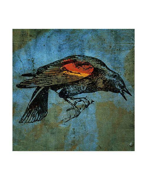"""Trademark Global John W. Golden 'Redwing Blackbird' Canvas Art - 14"""" x 14"""""""