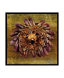"""John W. Golden 'Sea Urchin Gold' Canvas Art - 14"""" x 14"""""""