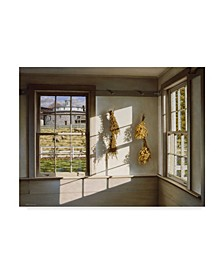 """William Breedon 'Order And Light' Canvas Art - 14"""" x 19"""""""