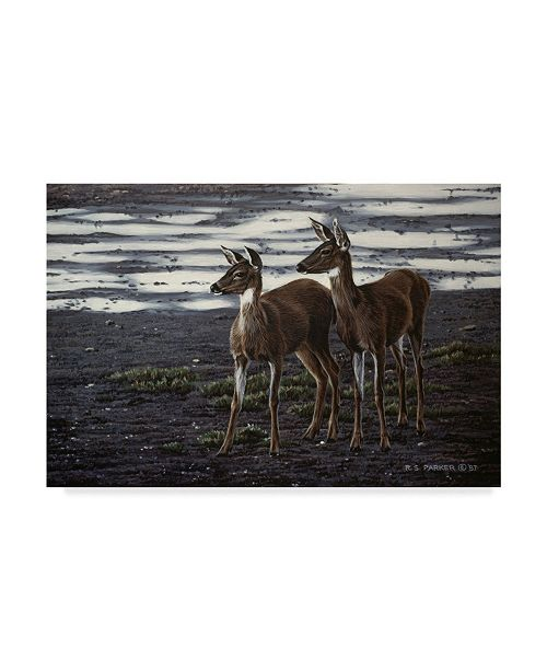 "Trademark Global Ron Parker 'On The Flats' Canvas Art - 12"" x 19"""