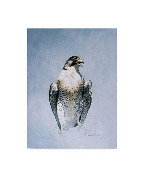 "Trademark Global Ron Parker 'Peregrine Falcon' Canvas Art - 14"" x 19"""