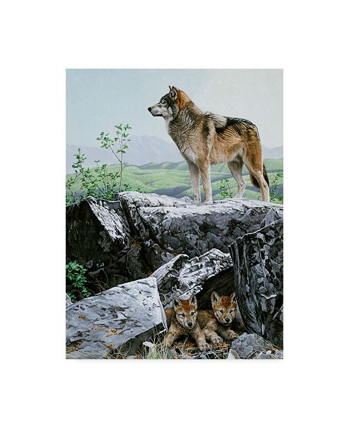 "Trademark Global Ron Parker 'The Guardian' Canvas Art - 14"" x 19"""