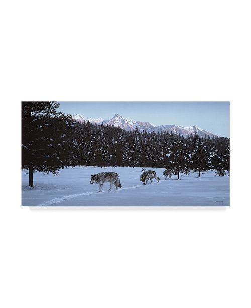 "Trademark Global Ron Parker 'Evening Glow Wolf Pack' Canvas Art - 12"" x 24"""