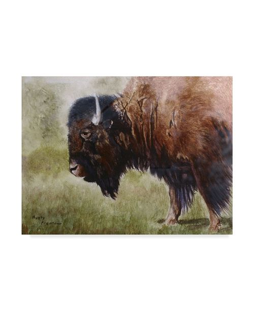 "Trademark Global Rusty Frentner 'Buffalo' Canvas Art - 14"" x 19"""