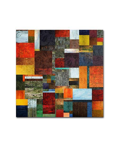 "Trademark Global Michelle Calkins 'Brocade Color Collage 2' Canvas Art - 14"" x 14"""