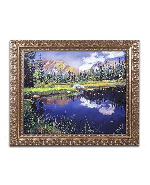 "Trademark Global David Lloyd Glover 'Reflections in Solitude' Ornate Framed Art - 11"" x 14"""