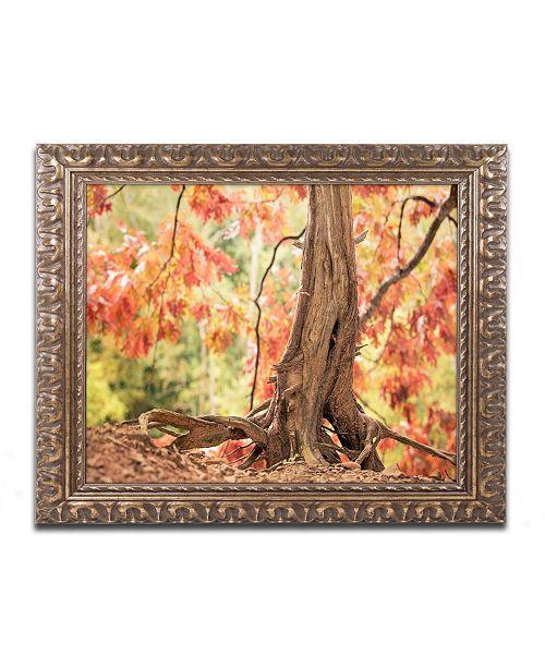 """Trademark Global Jason Shaffer 'Hang Tight' Ornate Framed Art - 14"""" x 11"""""""