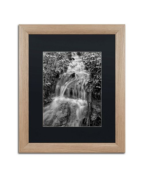 "Trademark Global Jason Shaffer 'Mohican' Matted Framed Art - 16"" x 20"""