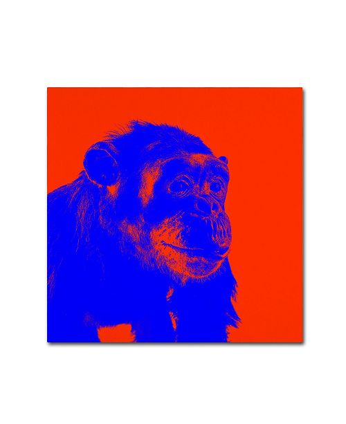 """Trademark Global Claire Doherty 'Chimp No 6' Canvas Art - 18"""" x 18"""""""