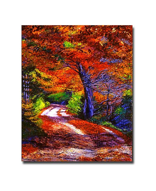 "Trademark Global David Lloyd Glover 'Sunlight Through the Trees' Canvas Art - 24"" x 18"""