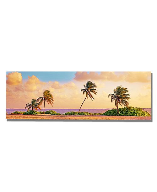 "Trademark Global Preston 'Cayman Palms' Canvas Art - 24"" x 8"""