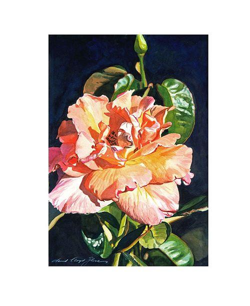 "Trademark Global David Lloyd Glover 'Royal Rose' Canvas Art - 24"" x 16"""