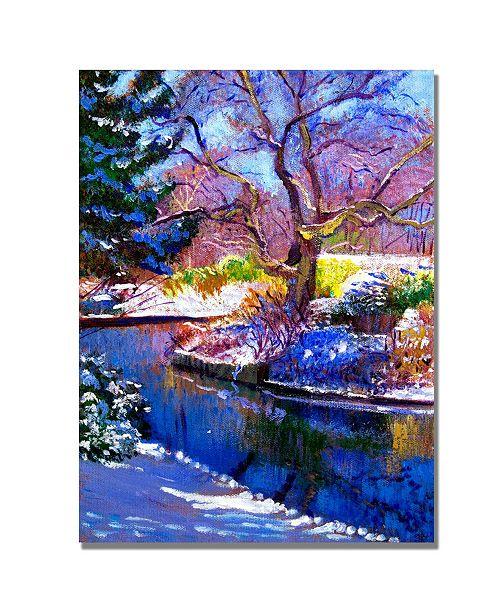 "Trademark Global David Lloyd Glover 'Snowy Park' Canvas Art - 24"" x 18"""