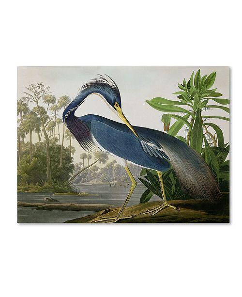 "Trademark Global John James Audubon 'Louisiana Heron' Canvas Art - 24"" x 18"""