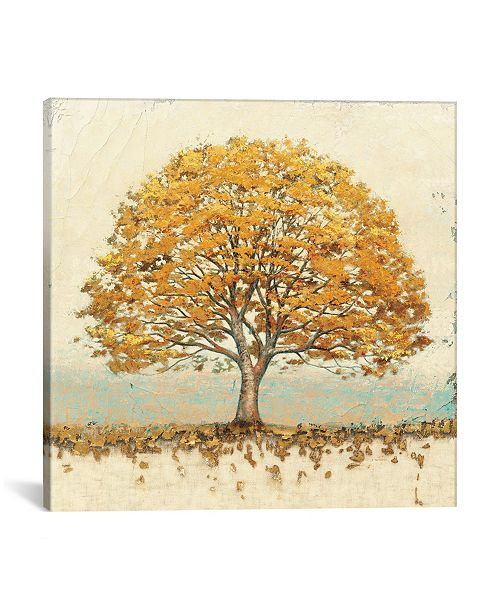 """iCanvas Golden Oak by James Wiens Gallery-Wrapped Canvas Print - 26"""" x 26"""" x 0.75"""""""