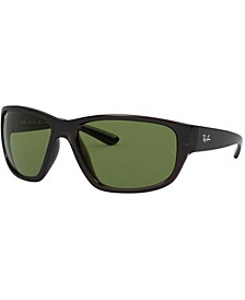 Polarized Sunglasses, RB4300 63