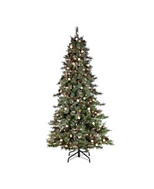 7.5Ft. Pre-Lit Mixed Needle Arcadia Fir Tree with 95 G40 LED Glass Bulbs