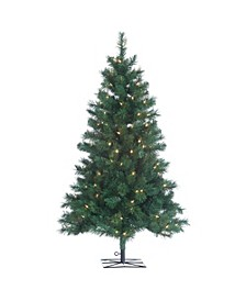 4Ft. Pre-Lit Colorado Spruce with 150 Clear Lights