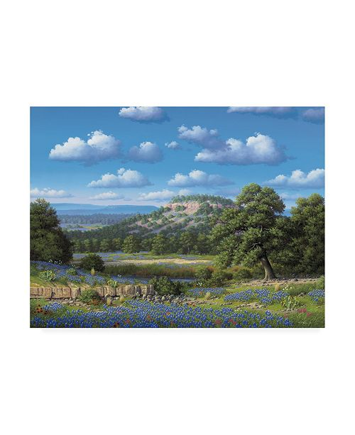 "Trademark Global R W Hedge Blue Bonnet Hill Canvas Art - 19.5"" x 26"""