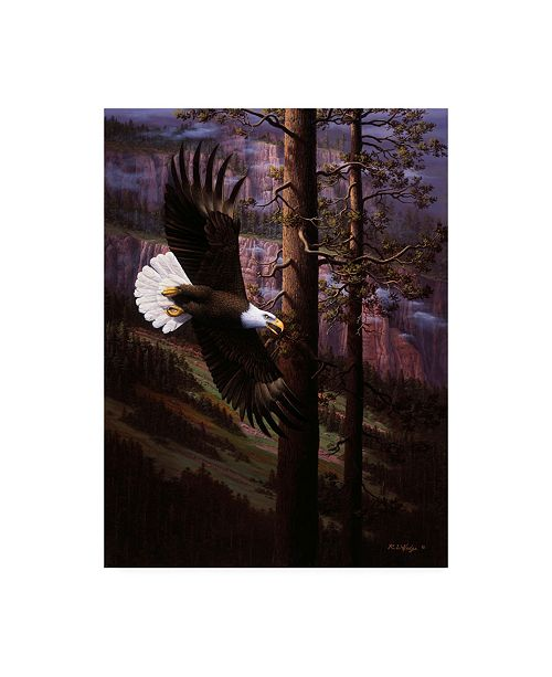 """Trademark Global R W Hedge The Master of Freedom Canvas Art - 27"""" x 33.5"""""""