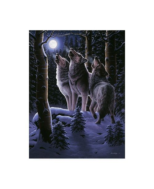 "Trademark Global R W Hedge Midnight Clear Canvas Art - 36.5"" x 48"""