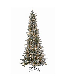 6.5Ft. Lightly Flocked Canyon Fir with 350 Clear Lights