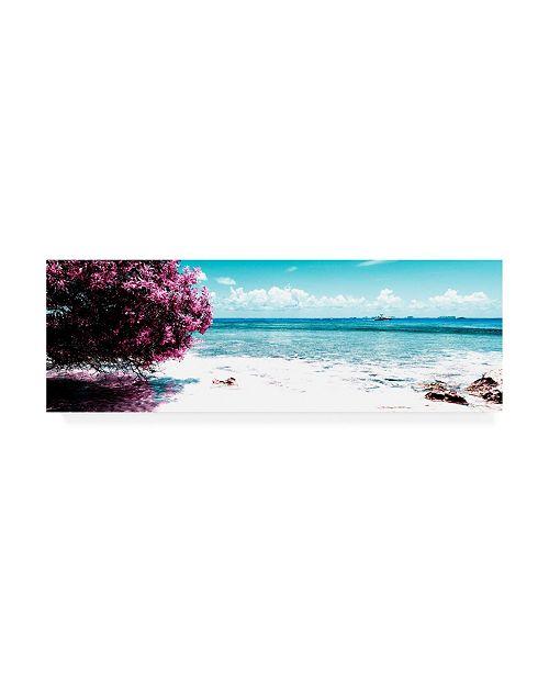 """Trademark Global Philippe Hugonnard Viva Mexico 2 Caribbean Coastline II Canvas Art - 15.5"""" x 21"""""""